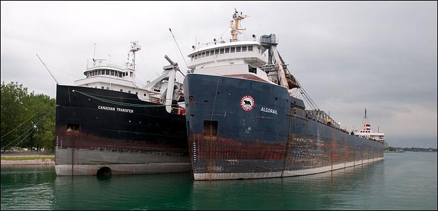 Algorail & Canadian Transfer