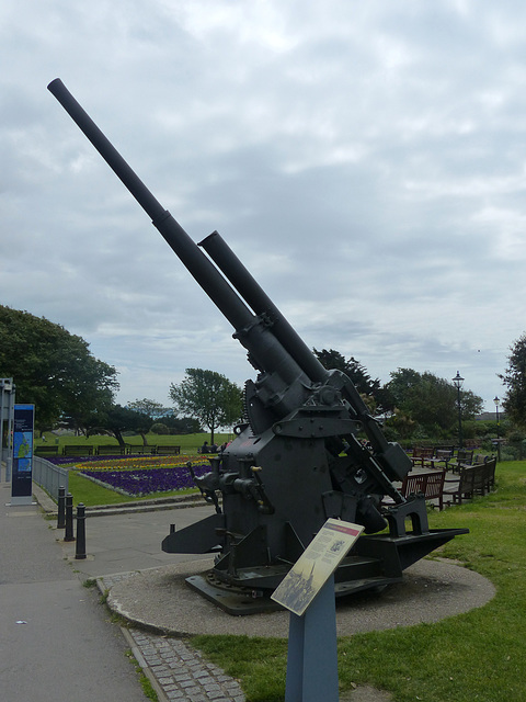 Anti-Aircraft Gun - 2 June 2014