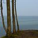 Steilküste an der Eckernförder Bucht