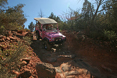 0501 153901 Pink Jeep in Coconino National Forest