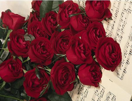 Des roses rouges pour le cœur !