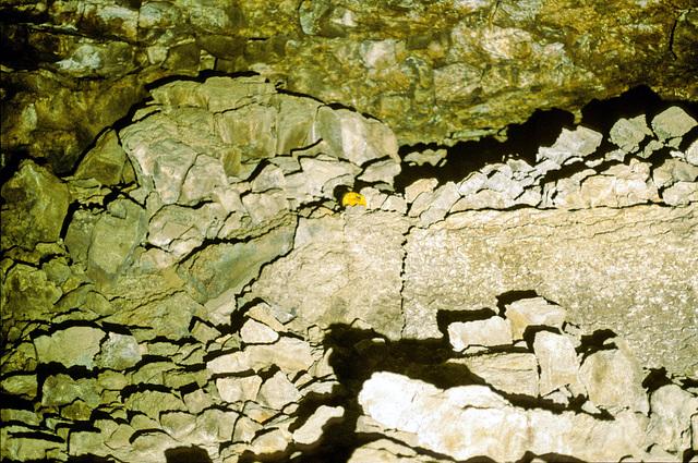 08-wall_in_wall_rm_adj