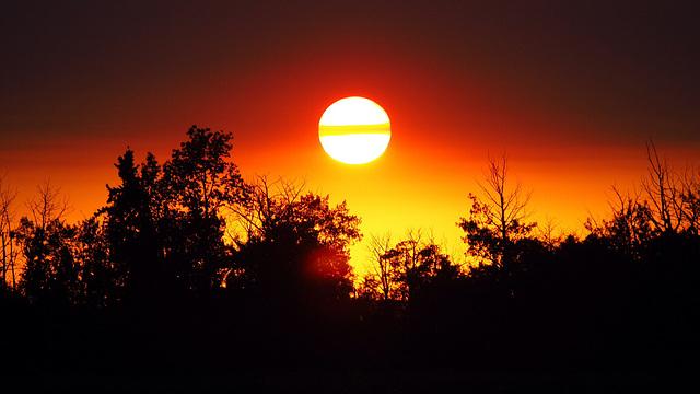 Sunband 1