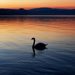 Twilight at the lake.