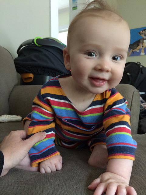 Little Quiff Boy