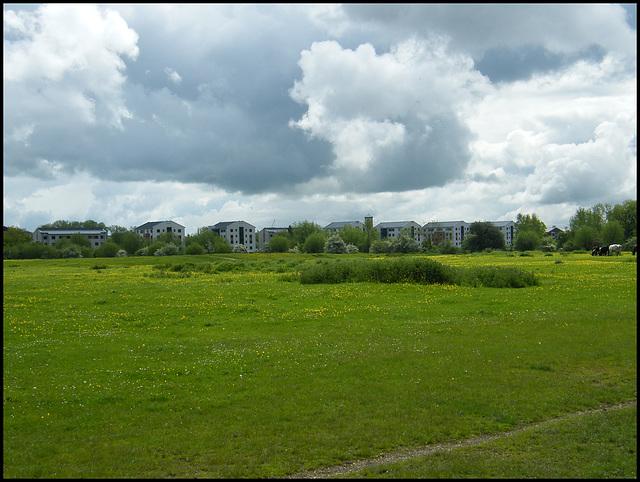 university blots on the skyline