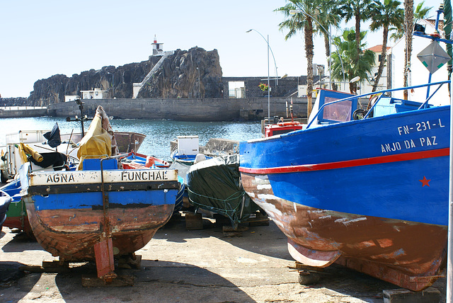 Madeira, Im Hafen von Camara de Lobos. ©UdoSm