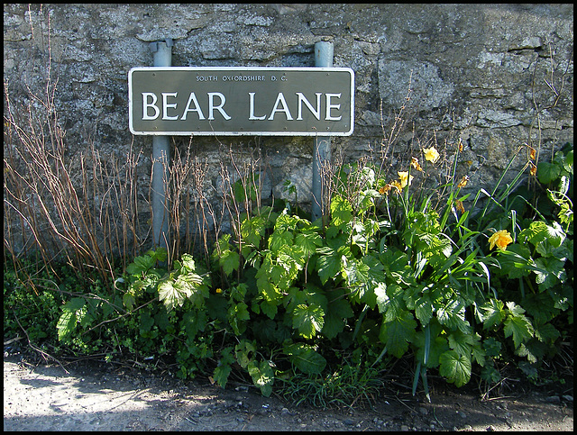 Bear Lane street sign