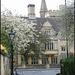Oxford spring
