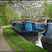 Jericho towpath in spring