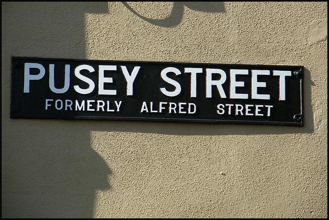 Pusey Street sign