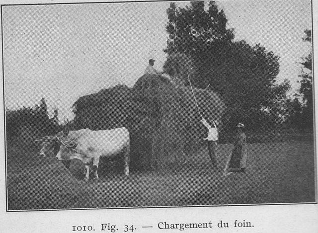 1927chargementdufoin