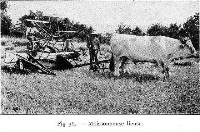 1927moissonneuse-lieuse