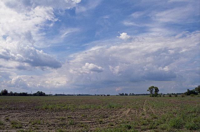 Benton Countryside
