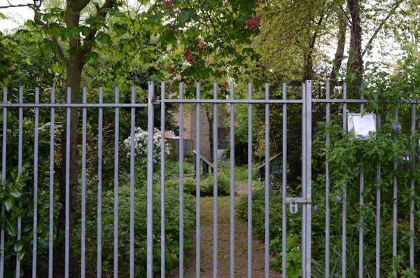 Balmore St community garden