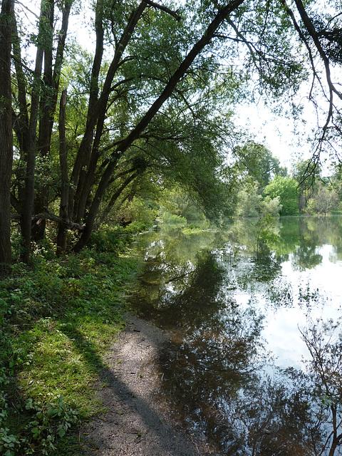 Badestelle am Natursee