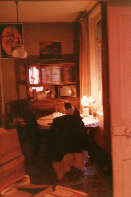 Figaro chez moi rue Noël Trannin été 89