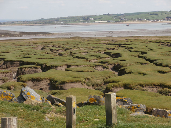 The mudflats