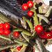 Cactus Flowers (2295)