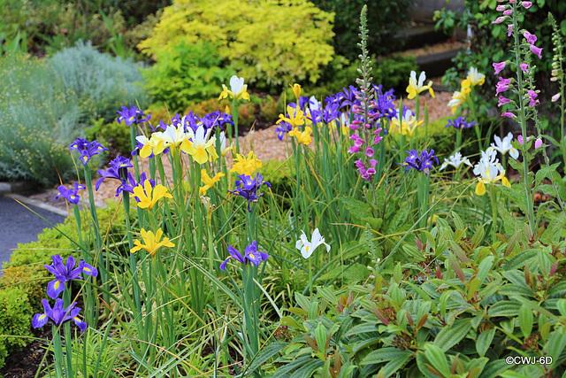 Carestown Steading Garden