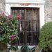 Fenêtre botanique / Botanical window.