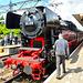 Dordt in Stoom 2014 – Steam engine 65 018