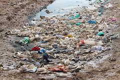 Pollution des salines sur l'île de Sal , triste réalité .