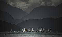 Une régate sur le lac d'Annecy.