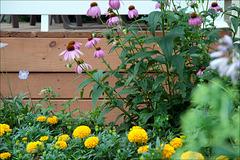 Window Garden with Porch