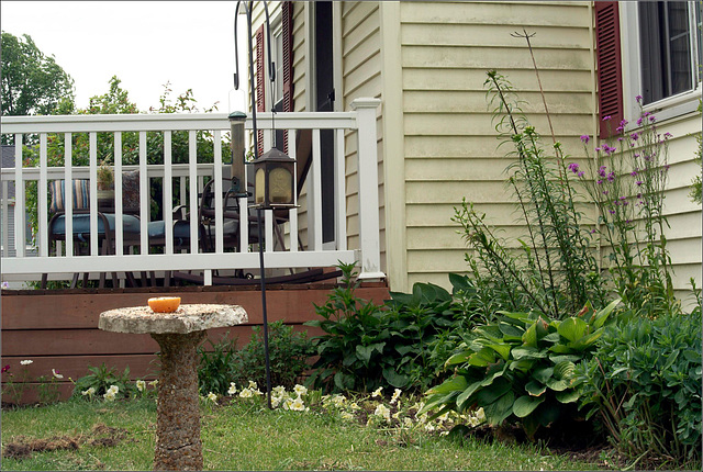 The Window Garden