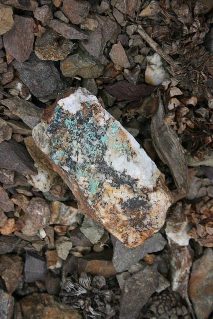 Bull quartz
