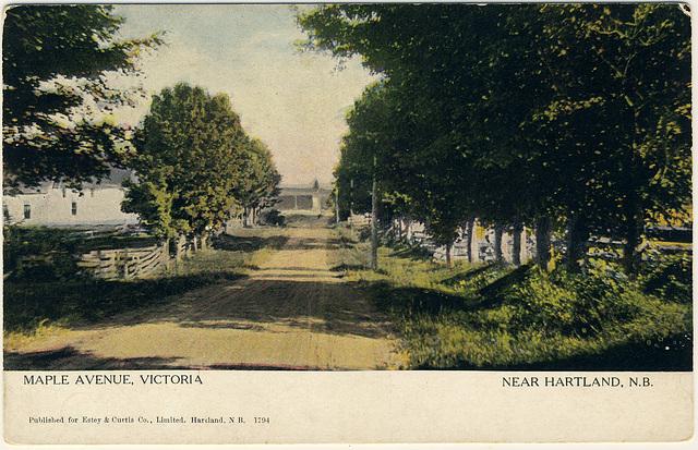 Maple Avenue, Victoria, near Hartland, N.B.