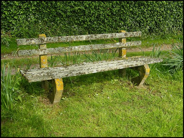 lichen-covered seat
