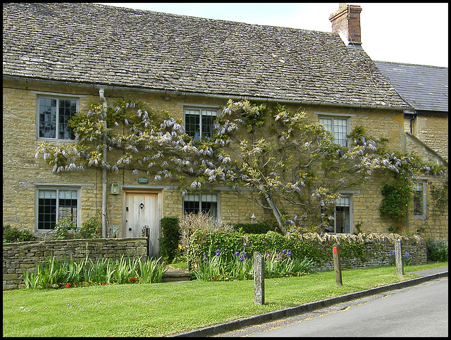 wisterious cottage