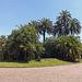 The Royal Park of Capodimonte, June 2013