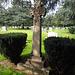 Mountain View Cemetery (2162)