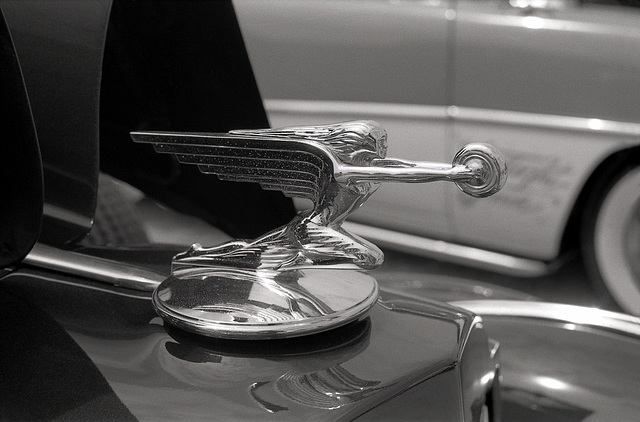 1935 Packard Hood Ornament