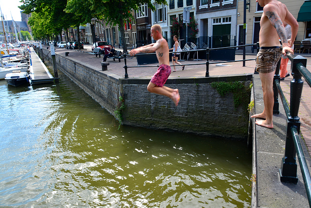 Swimming in the harbour of Dort