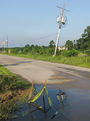 In the wet heat of a poorly-drained suburban morning in southwestern Louisiana.