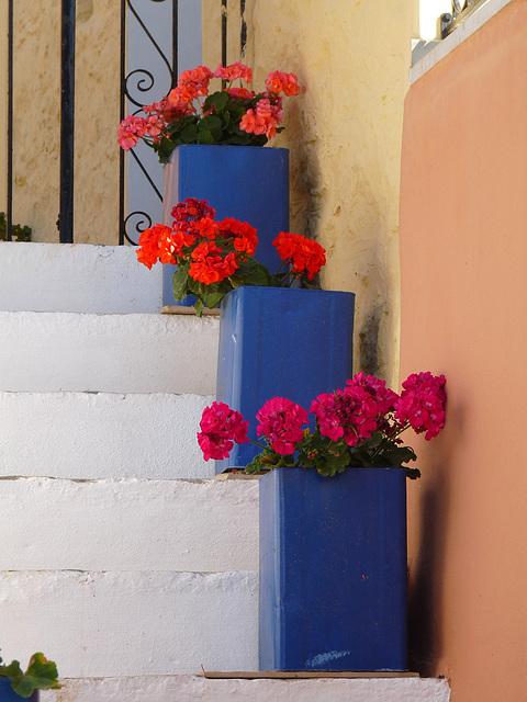 Ascending Flowers