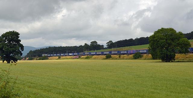 Tesco Freight Train North Of Lockerbie
