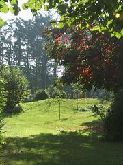 Montoison - Drôme - le cocher
