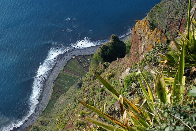 Cabo Girao. Ein Blick nach unten.  ©UdoSm