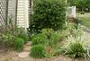 The Trellis Garden