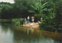 Touristes et autochtones...