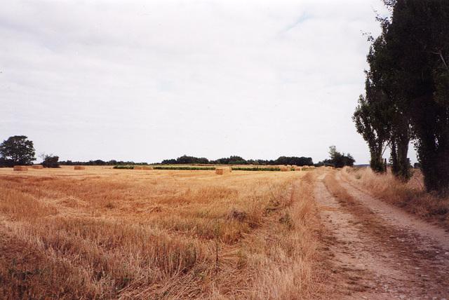 Poitou1999