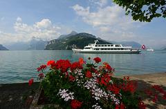 Le lac des Quatre Cantons (Suisse Centrale)