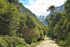 On the Carretera Austral