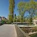 BFM & Pont de la Coulouvrenière (11 im.)