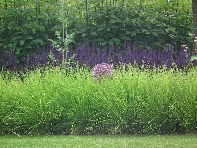 Great use of grasses in planting